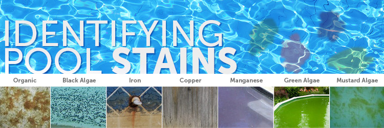 Identifying Pool Stains