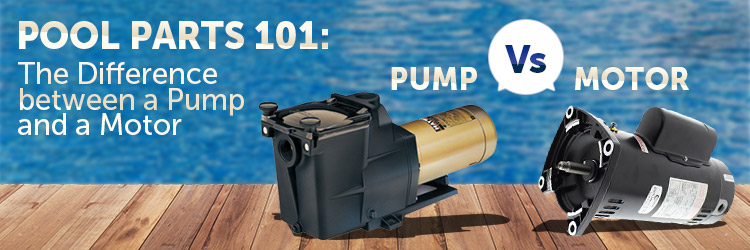 Pool Pump or Pool Motor?
